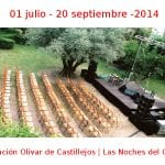 01 julio - 20 septiembre - 2014 | Fundación Olivar de Castillejos | Las Noches del Olivar | Veranos de la Villa 2014 | Madrid