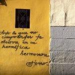 Todo lo que no comprendes te observa en su hermética hermosura | Alonso | Graffitis de Madrid | Calle del Salitre esquina con Calle de Argumosa | Diciembre 2014