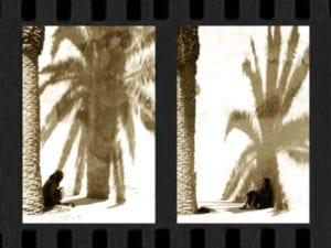 Al-baraka | Exposición fotografica de Pura Arenal | El foro de Izab | Desde el 6 de junio de 2019 | La Latina (Madrid) | Mujer y hombre