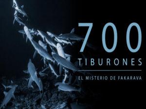 Nuevo programa de VR | Odisea | Círculo de Bellas Artes | Madrid | 17/10-17/11/2019 | '700 tiburones. El misterio de Fakarava'