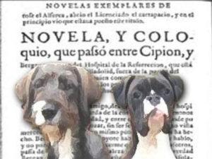 Ahora que nos dejan hablar | 23/01/2021 | Corral de Comedias | Alcalá de Henares | Comunidad de Madrid | Foto Universidad Complutense de Madrid