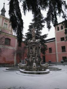 Madrid, Filomena a mi pesar | 25/01-07/03/2021 | 2º Concurso de Fotografía del Museo de Historia de Madrid | Jardines del Arquitecto Ribera